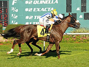 Cloud Scapes wins the Hillsborough Stakes (Grade III) at Tampa with Erick Rodriguez