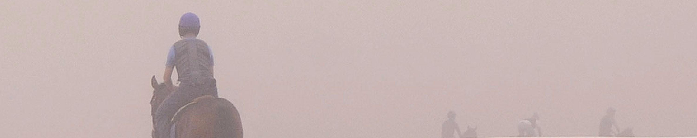 SLIDER-FOG-9-5-14_D305986