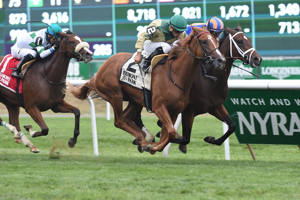 Tin Type Gal wins the Miss Grillo Stakes (Grade III) at Belmont