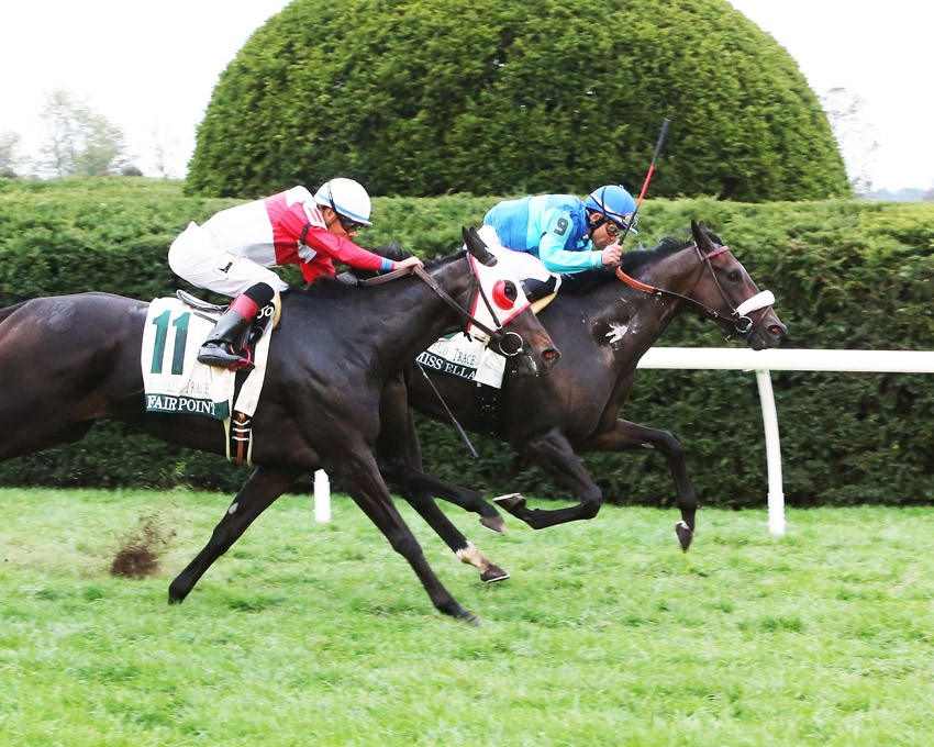 miss-ella-wins-the-buffalo-trace-franklin-county-g3