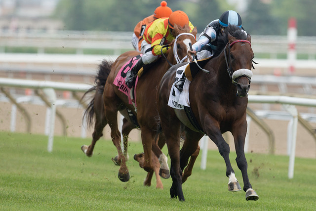 Toronto Ont.June 23, 2018.Woodbine Racetrack.Singspiel Stakes.Shahroze  under Jockey Alan Garcia, capture the $125,000 dollar Singspiel Stakes over the E.P.Taylor turf course at Woodbine Racetrack. michael burns photo