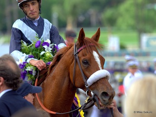 Main Sequence Mike