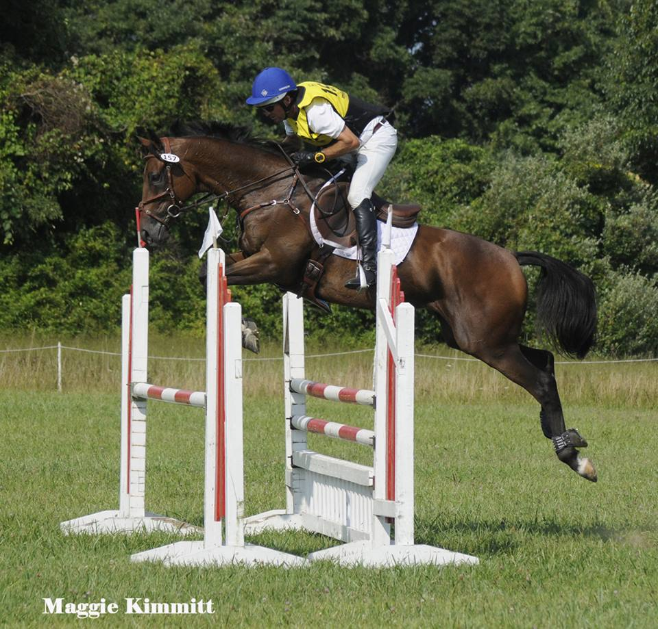 icabad crane - herringswell stables