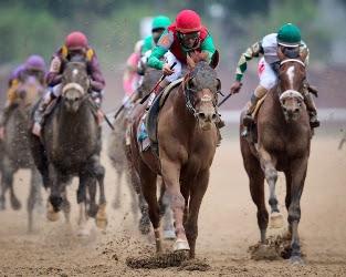 Animal Kingdom- Kentucky Derby 137