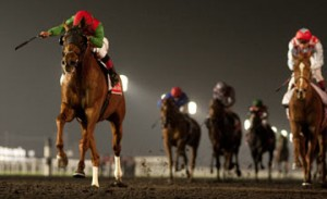 Animal Kingdom Dubai World Cup