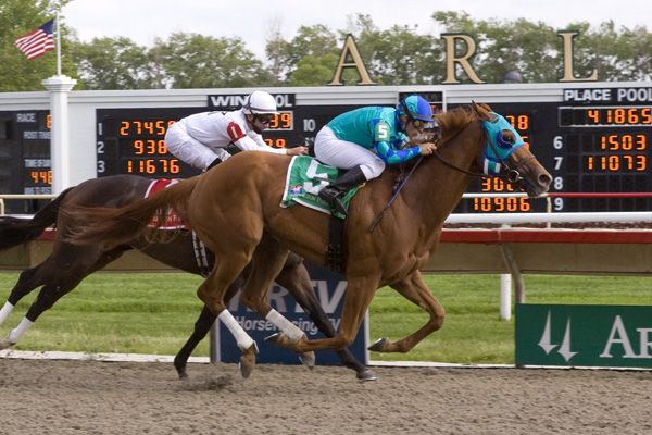 Indescribable winning the Matron Stakes