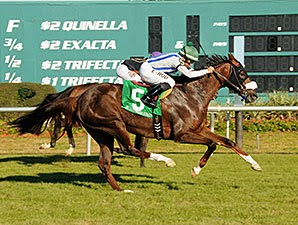 Cloud Scapes winning The Endeavour Stakes (Grade III) at Tampa with Erick Rodriguez