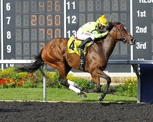 Star Pearl winning the Northern Fling Stakes at Presque Isle with Erick Rodriguez riding