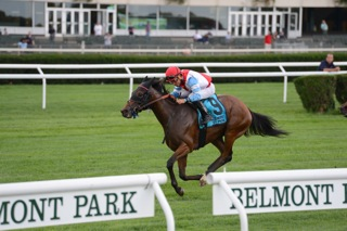 Ultra Brat wins the Christiecat Stakes at Belmont