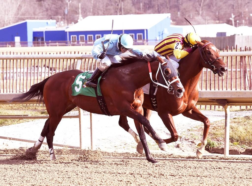 irish-war-cry-Marylander Stakes