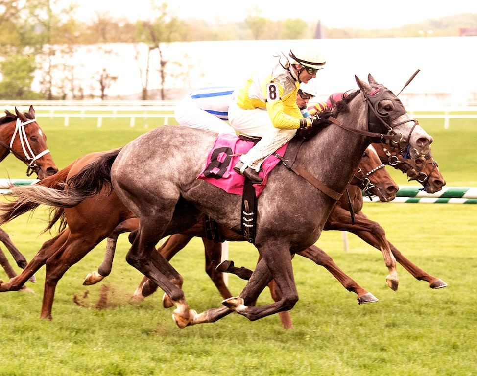 Ascend winning the Henry Clark Stakes at Laurel
