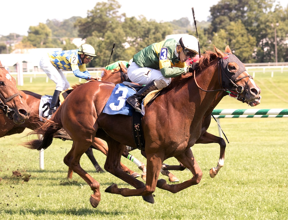 Just Howard wins the Find Stakes