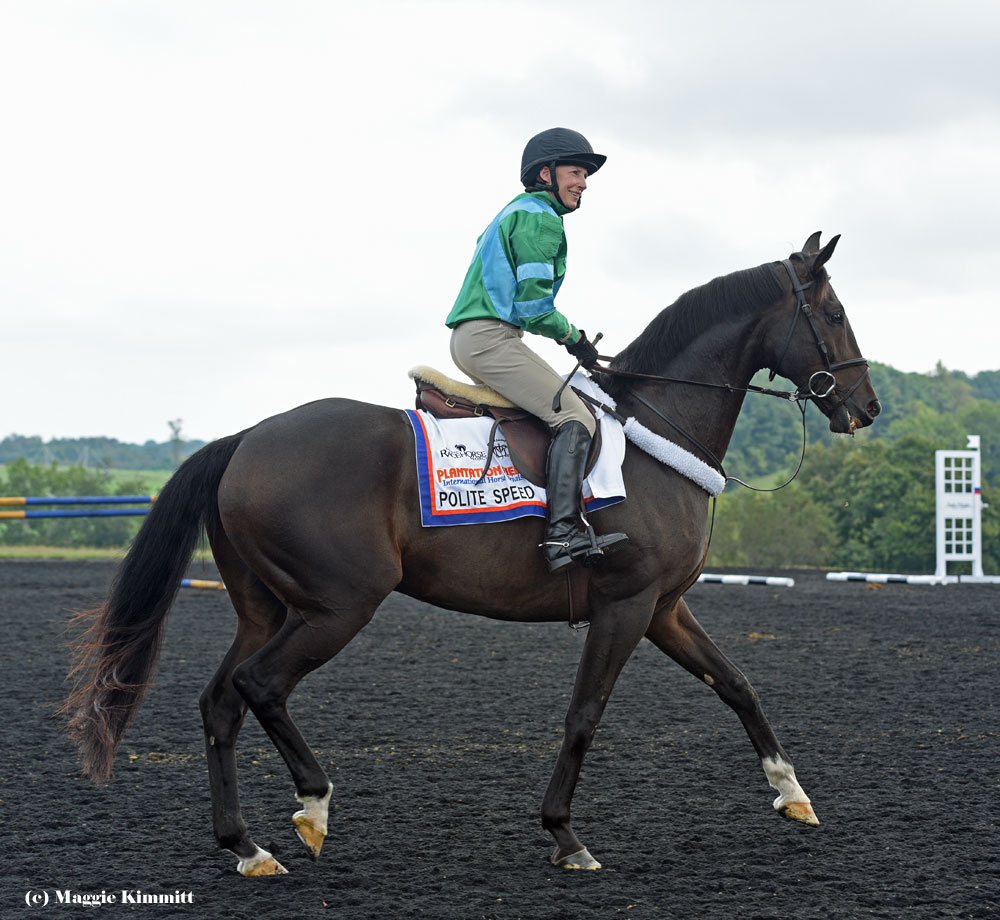 Anne Moran and Polite Speed