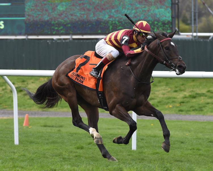 Lady Alexandra, winner of The License Fee Stakes at Belmont