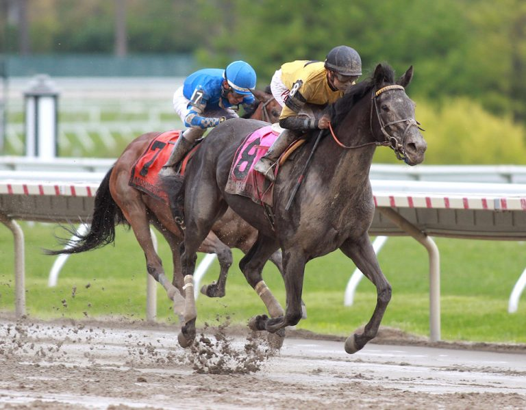 Berned (#8) and Joe Bravo won the $60,000 Serena's Song Stakes at Monmouth Park in Oceanport, New Jersey on Saturday May 12, 2018. Photo By Bill Denver/EQUI-PHOTO