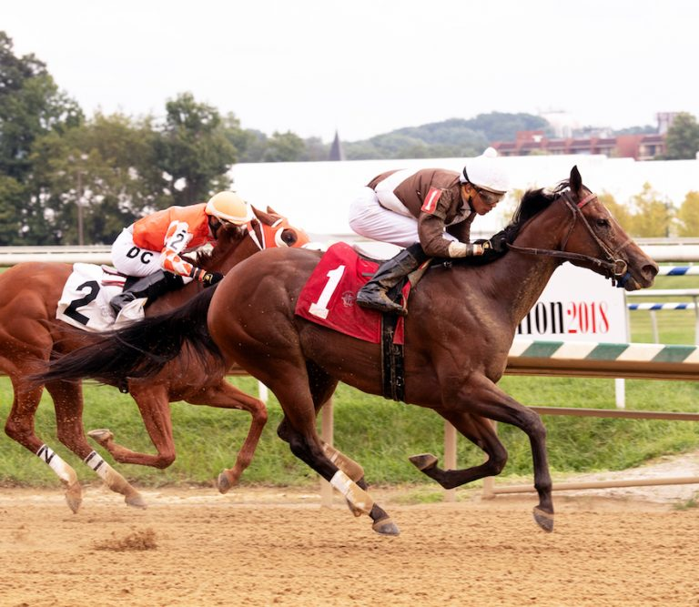 Majestic Reason wins Miss Disco Stakes at Laurel