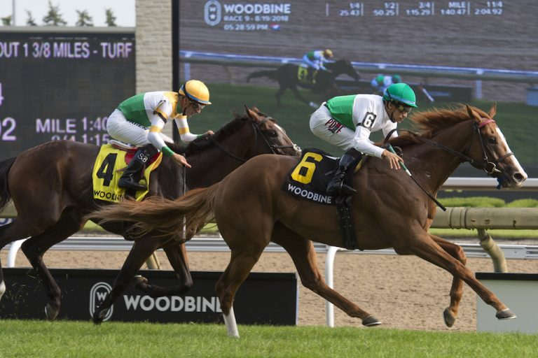 Toronto Ont.August 19, 2018.Woodbine Racetrack.Sky Classic Stakes. Utmost under Jockey Alan Garcia, (White and green cap silks,outside) capture the $175,000 dollar Sky Classic Stakes over the E.PTaylor turf course for owner Augustin Stables and trainer Graham Motion. michael burns photo