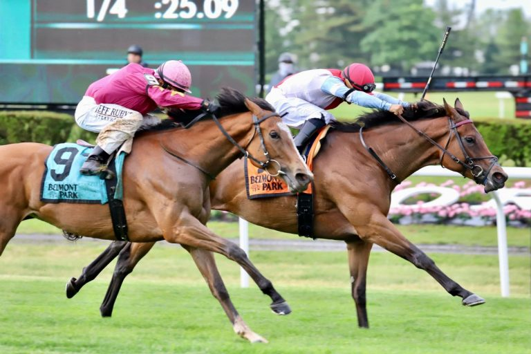 Mean Mary New York Stakes Grade 11
